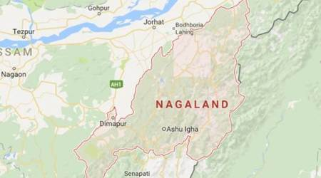 Nagaland civic bodies, Nagaland civic bodies nominations, Nagaland civic bodies elections, Nagaland protest, protest by Naga Tribes, Nagaland protest, Northeast news, ULB, indian express news