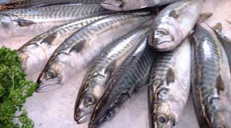 diabetes vision loss, oily fish health benefits, omega- 3 fats, omega- 3 fats good for diabetes, retinopathy prevention