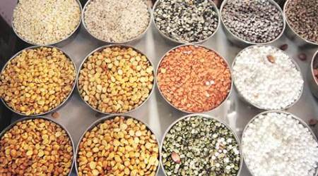pulses, adani pulses, adani, adani, Adani Food and Agro-processing Park, sez, special economic zone, pulses export, business news, commodities news