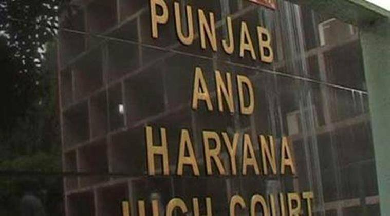punjab and haryana high court, punjab and haryana hc, haryana police department, E-vetting replies haryana police, haryana news, indian express, india news