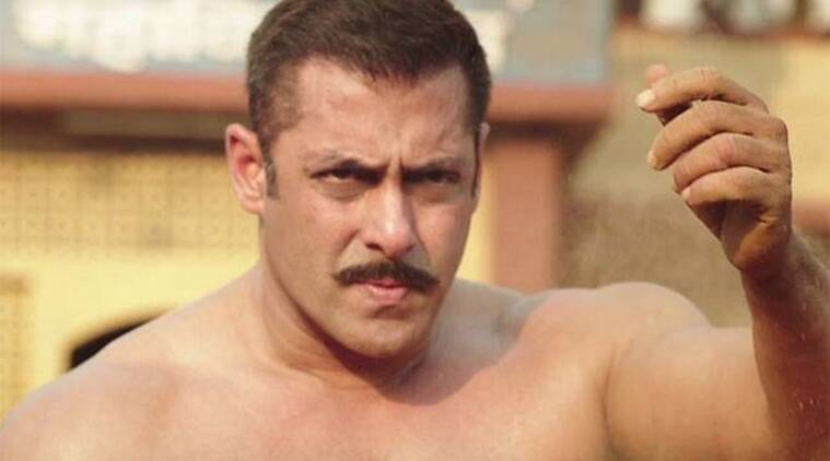 Sultan box office, Salman Khan, Sultan latest box office, Sultan box office collections, sultan, sultan movie, Salman, Sultan latest box office collections, Salman Khan Sultan, Sultan Salman Khan, Sultan box office news, sultan collections, Sultan 300 cr club