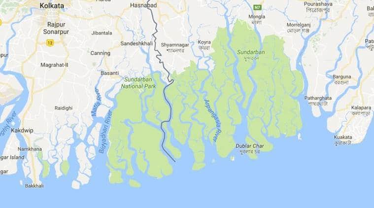 Sundarbans threatened by 'heedless industrialisation', says UN expert