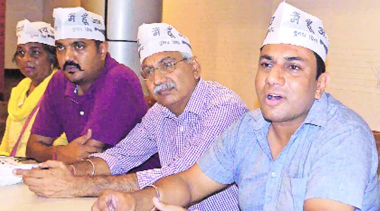 chandigarh, chandigarh news, chandigarh aap, aap to launch campaign for stray cattle, aam aadmi party, aap campaign or stray cattle, indian express, india news