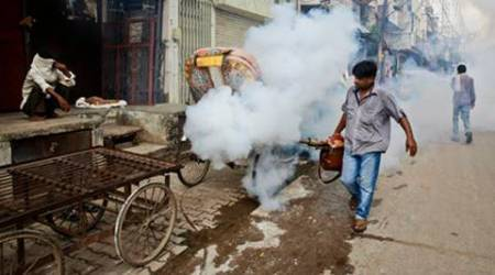 Delhi battles chikungunya: Six more die, toll rises to 11; AAP says 'let's rise above politics'