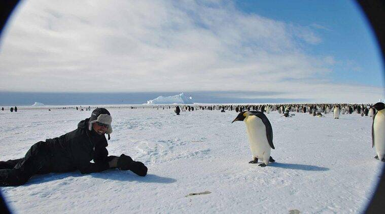 A Trip To The Interiors Of Antarctica Along With Emperor