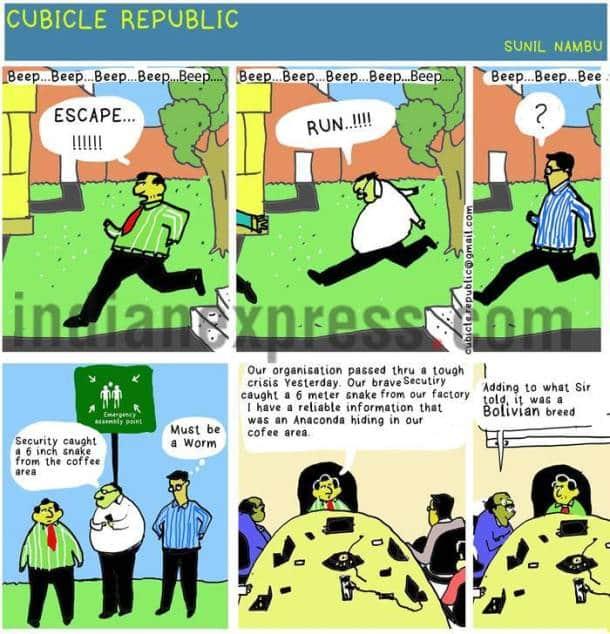 Cubicle Republic