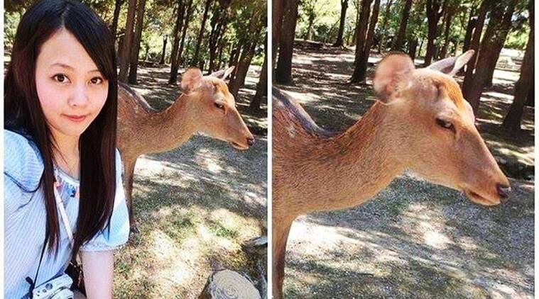 deer's reaction selfie, woman's selfie with deer viral, selfies, epic selfies of 2016, epic 2016 selfies, funny animals, funny animal pictures, indian express, indian express news