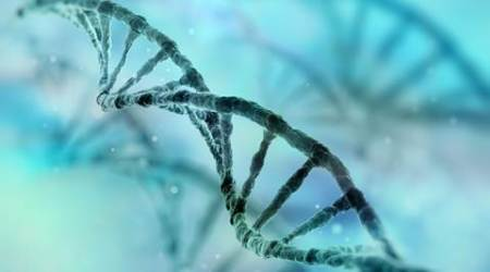 cancer, dna, cancer gene, cancer dna, genome, cancer research, dna cancer, elderly cancer, cancer risks, dysregulation of DNA, medical research, health news, lifestyle news, latest news, indian express