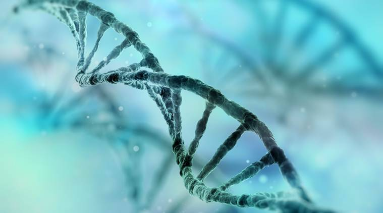 dna, sixth sense, dna sixth sense, dna 6 sense, scoliosis, neurological disorder, spine injury, brain injury,  PIEZO2, genome research, dna reserach, health news, medicine news, latest news