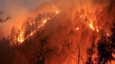 Forest Fires preventions, Indian Forest department, forest Department and Schools in India, Schools to teach forest fire preventions, latest news, India news, National news, latest news, India news, National news, latest news,