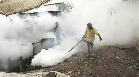 Gurgaon braces for another fight with dengue,malaria