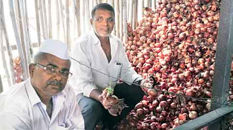 As onion prices plunge to decade low, farmers take to sit-ins