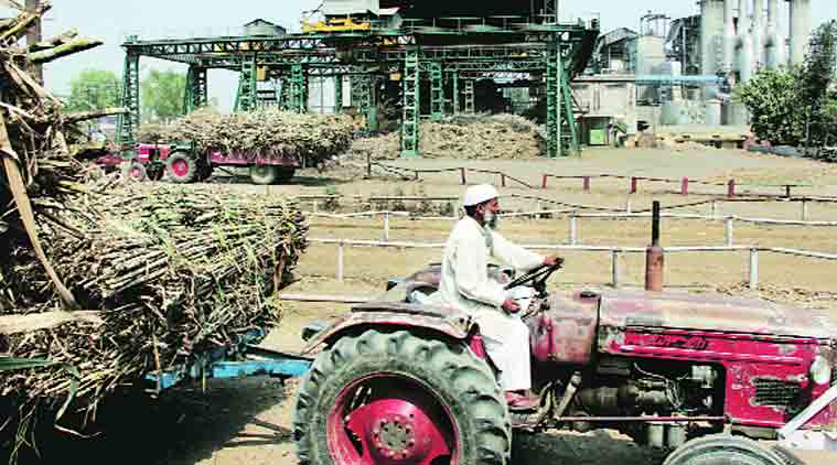 sugar prices, sugar import, import duty on sugar, india sugar production, indian express news
