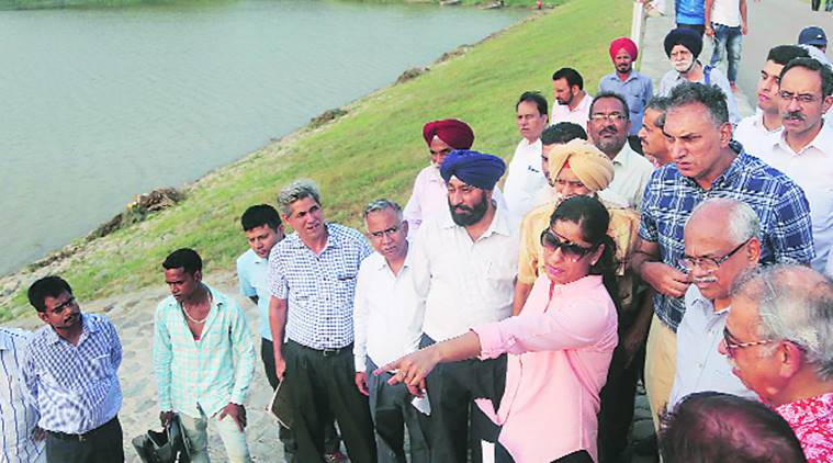 Sukhna Lake, weed-filled lake, Punjab and Haryana High Court, Chandigarh administration, Sukhna Lake clean-up, Chandigarh, Chandigarh news, latest news, Indian express
