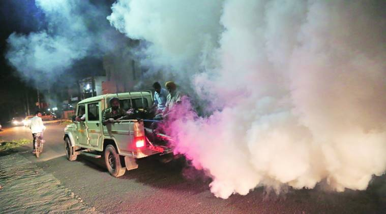 chandigarh, chandigarh dengue, chandigarh dengue fogging, chandigarh dengue precaution, chandigarh dengue fumigation, chandigarh dengue survey, chandigarh news, indian express, india news