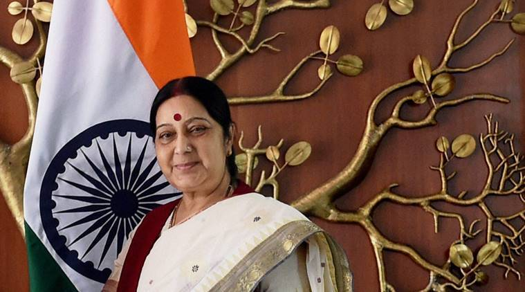 sushma swaraj, brics summit, brics, brics summit goa, brics summit india, brics india, brics, sushma swaraj at brics summit, india news