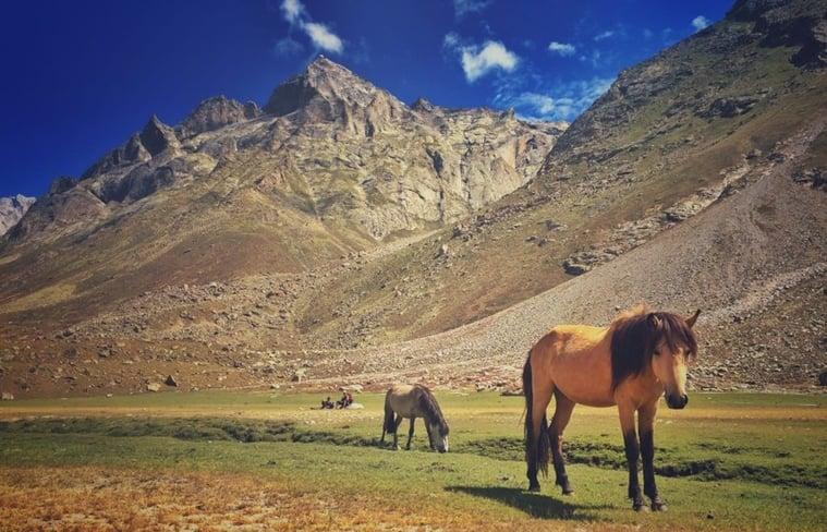 trekking-lessons003_759_vyashakh-nair