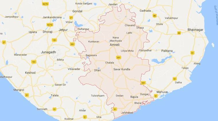 Amreli, Amreli district, Amreli windmills, Amreli gauchar land, Gujarat news