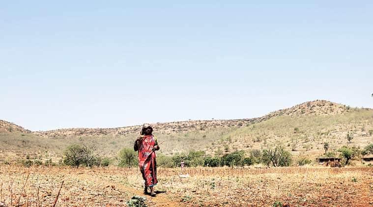 drought, drought in south india, tamil nadu, kerala, karnataka, inadequate rainfall, monsoon, rainfall deficit, india news, indian express
