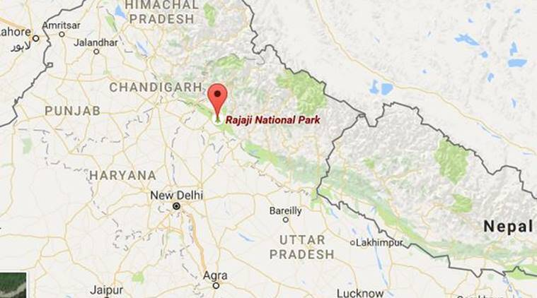 Elephant hit by train in Utharakhand, Uthrakhand news, elephant hit by train, latest news, India news, national news