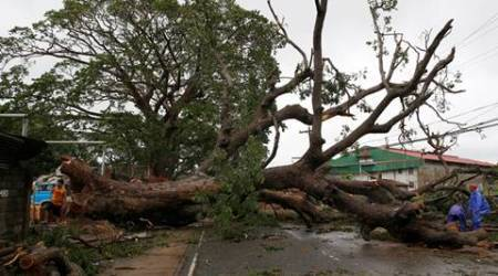 Government workers cut branches of an uprooted tree along a road after Typhoon Haima struck Laoag city, Ilocos Norte in northern Philippines, October 20, 2016.     REUTERS/Erik De Castro