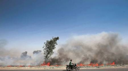Centre hopes machines can solve crop burningmenace