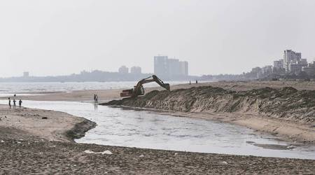Nineteen teams formed to clean beaches, riverfronts: Environment Ministry