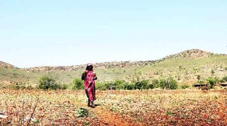 Maharashtra drought, Drought prone areas, scarcity of water, water crises in Maharashtra,GSDA, framers, farmers problems Jalyukt Shivar scheme, Mumbai, Indian Express