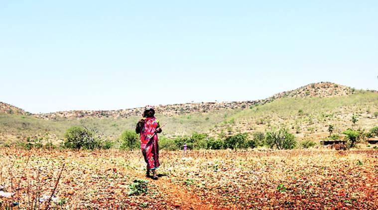 Maharashtra govt releases 2nd installment of drought relief