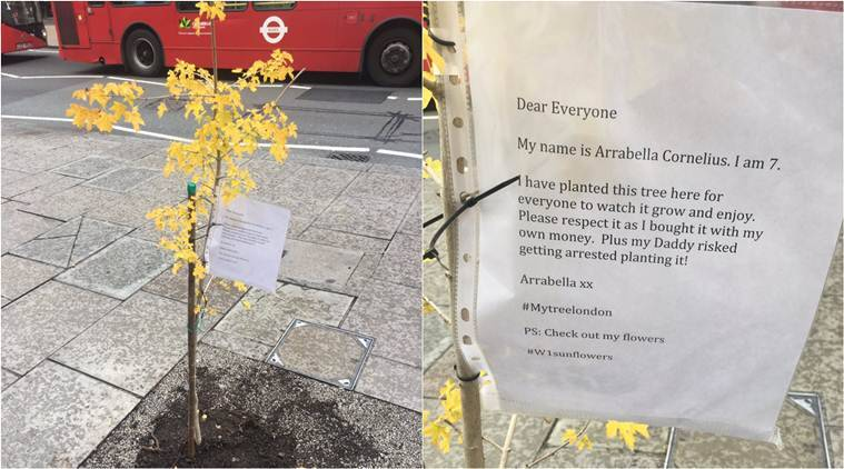 london, trees, child plants tree in london street, father daughter plant tree in london street, my tree london, little girl plant tree in london street, viral news, trending news, london news, world news, latest news