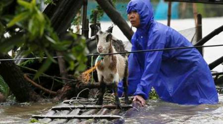 Typhoon Haima kills 12, destroys rice fields in Philippines, takes aim at Hong Kong