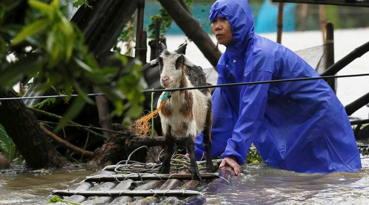 Typhoon haima, typhoon, philippines typhoon, philippines typhoon deaths, typhoon haima deaths, typhoon haima death toll, philippines crop damage, philippines rice field, hong kong, hong kong typhoon, world news, indian express