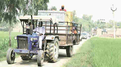 Hike in seed price: Punjab farmers forced to pay double for spring maize & sunflower seeds