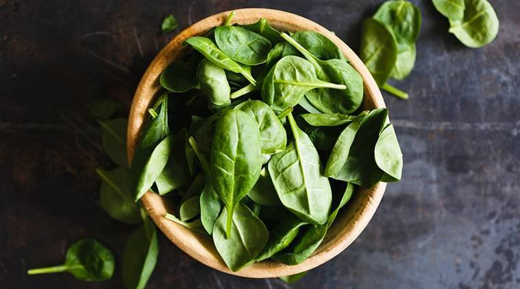 Spinach, spinach used to detect explosives, explosives, trending news, latest news, indian express