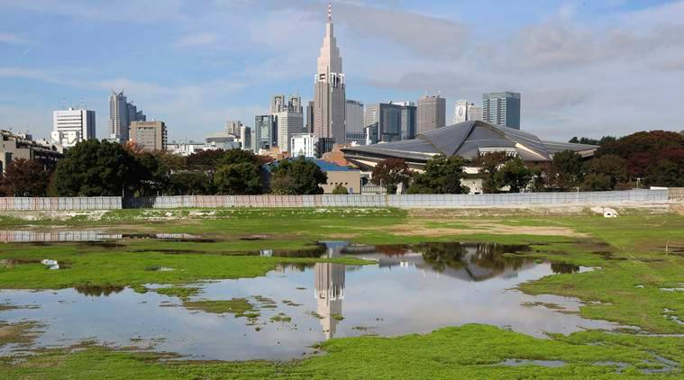 olympics, 2020 olympics, tokyo olympics, 2020 tokyo olympics, olympics 2020, olympics tokyo, rowing, olympics rowing, rowing olympics, sports