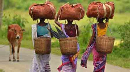 Simply put: Demand for tribal status becomes louder in Assam