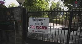 Delhi National Zoological Park Shuts Down Temporarily: Find Out Why