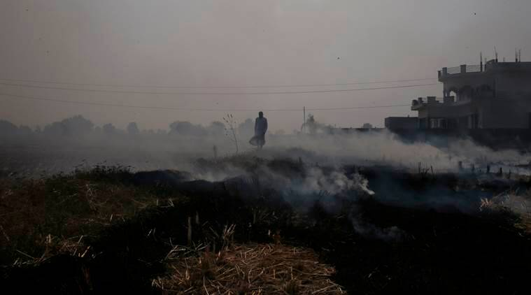 In this Friday, Nov. 4, 2016 photo, Bijender Singh walks through smoke caused by setting his field on fire to prepare it for its next yield at Chandhat, in the state of Haryana, south of New Delhi, India. Even as the Indian capital hit a new low on air pollution, many of the problems that turn Delhi's air so toxic continue unabated, like farmers in bordering regions continuing to burn crop waste. (AP Photo/Saurabh Das)