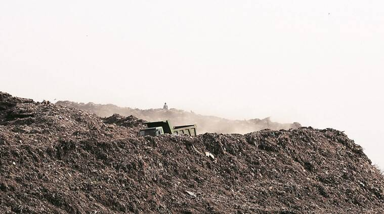 SC says solid waste in Delhi a serious problem, asks LG to constitute committee