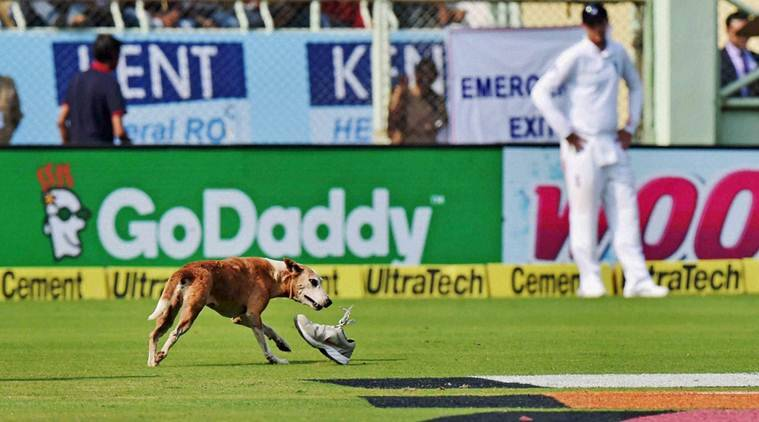 Visakhapatnam: A stray dog disrupts play during the 1st day of 2nd Test Cricket match against England in Visakhapatnam on Thursday. PTI Photo by Ashok Bhaumik(PTI11_17_2016_000155B)
