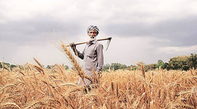 ... in the form of crop loan to farmers, that is Rs 10,000 crore a week