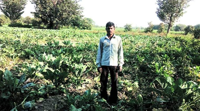 Satish Kumar at his farm in east Delhi. Express Photo by Abhishek Angad