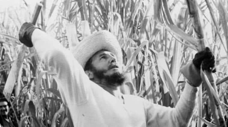 Fidel Castro, Fidel Castro revolution, Fidel Castro death, Fidel castro batista, batista cuba, Fidel Castro death, Cuban Prime Minister Fidel Castro, Cuban President Fidel Castro, revolutionary Fidel Castro, Fidel Castro died, world news