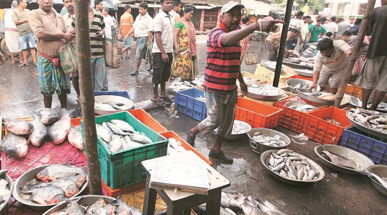 demonetisation, rs 500 ban, rs 1000 ban, bengal, bengal fish market, cash crunch, fish crisis, empty fish markets, fish price, indian express news, kolkata news, india news