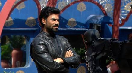 Bigg Boss 10 highlights, Bigg boss 10 yesterday episode, bani bigg boss 10, gaurav bigg boss 10