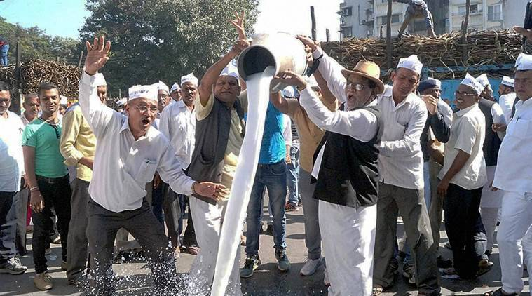 Surat: Farmers destroy farm products and milk after announced ban on District Co. Operative Banks in Surat on Saturday.   PTI Photo                    (PTI11_19_2016_000229B)