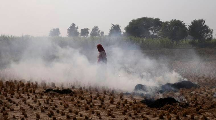 As Delhi gasped for air, Punjab saw 3,105 farm fires in one day