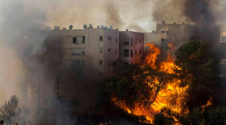 israel, Israel fire, israel widfire, israel forest fires, forest fire, wildfire, arson, investigating wildfire, world news, indian express news