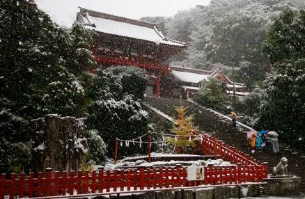 winter, winter 2016, snow, snowfall, winter vacation, winter holidays, winter travel destination, tokyo, japan snowfall, uk snowfall, tokyo snow, winter snowfall, snowfall photos, spain snowfall, USA snowfall, lifestyle news, world news, latest news,