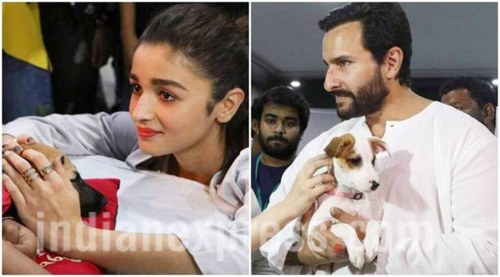 Alia Bhatt, Saif Ali Khan, Alia Bhatt pics, Alia Bhatt images, Alia Bhatt movies, Alia Bhatt news, Alia Bhatt photos, Alia Bhatt dear zindagi, Saif Ali Khan, Saif Ali Khan pics, Saif Ali Khan images, alia pics, alia images, entertainment photos, indian express, indian express news
